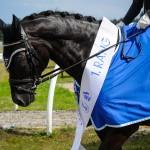 zz_OKV_Meisterschaft_Sieger-19